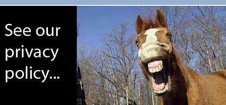 Picture of a horse laughing